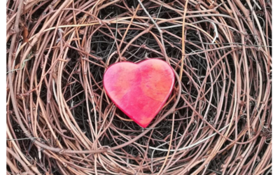 Sie möchten etwas Sinnvolles tun, bringen Lebenserfahrung mit und haben das Herz am richtigen Fleck?